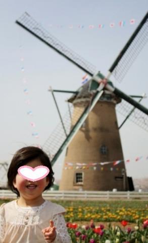 cocoと風車