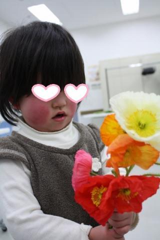 ポピーの花束
