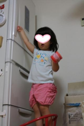 7/26 冷蔵庫が開けられるよ!