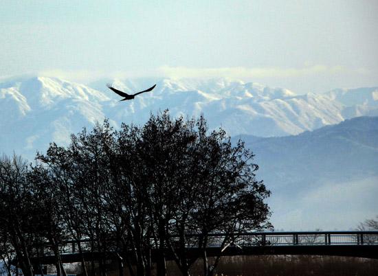 瓢湖20121228 040