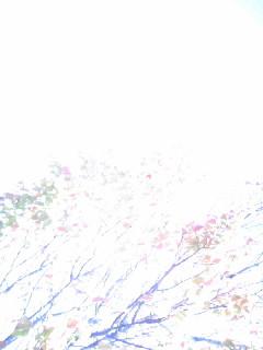121027_103613.jpg
