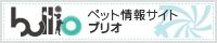 bnr200_40_1.jpg