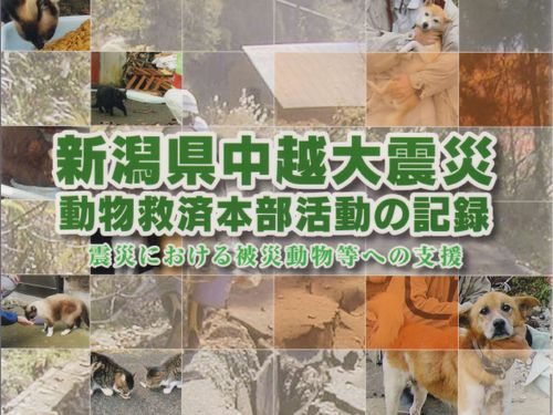 item_92_1.jpg