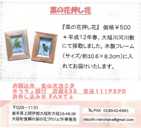 12nanohana-frame.jpg