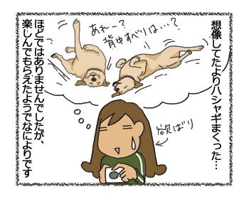 羊の国のラブラドール絵日記シニア!!夢の初日8