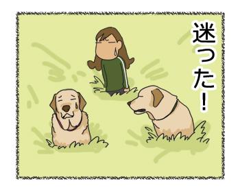 羊の国のラブラドール絵日記シニア!! 乙女のGPS4コマ漫画4