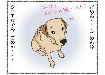 羊の国のラブラドール絵日記シニア!!4コマ漫画「今日は特別なの!」1