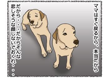 羊の国のラブラドール絵日記シニア!!4コマ漫画「今日は特別なの!」3