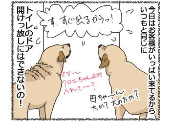 羊の国のラブラドール絵日記シニア!!4コマ漫画「今日は特別なの!」4