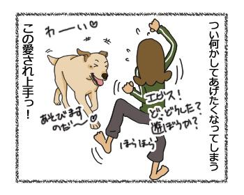 羊の国のラブラドール絵日記シニア!!愛され上手4