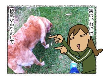 羊の国のラブラドール絵日記シニア!!美の秘訣2
