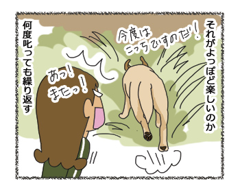羊の国のラブラドール絵日記シニア!! 4コマ漫画「時間差反省」2