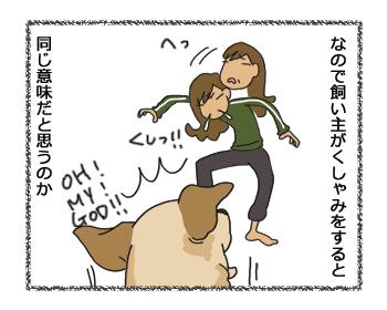 羊の国のラブラドール絵日記シニア!!彷徨いびと2