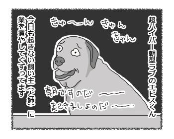 羊の国のラブラドール絵日記シニア!! コウモリもビックリ!4コマ1