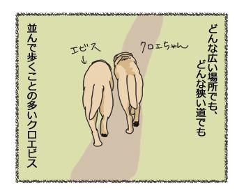 羊の国のラブラドール絵日記シニア!!ほほえまおしくらまんじゅう1