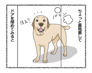 羊の国のラブラドール絵日記シニア!! ラブラドール4コマ漫画2