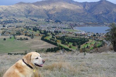 羊の国のラブラドール、Mt.Iron2