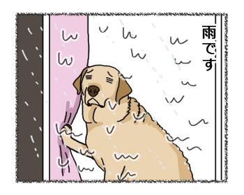 羊の国のラブラドール絵日記シニア!!お散歩貯金2