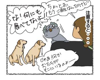 羊の国のラブラドール絵日記シニア!!4コマ漫画「愛犬は口ほどにモノを言う」3