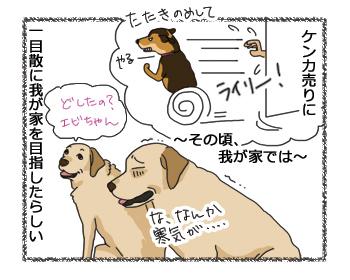 羊の国のラブラドール絵日記シニア!!怒りのライリーちゃん4