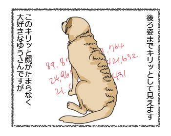 羊の国のラブラドール絵日記シニア!!キリッと顔の・・・?3