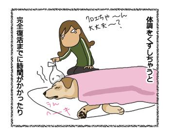 羊の国のラブラドール絵日記シニア!! 犬4コマ漫画「シニアなんだけど」1