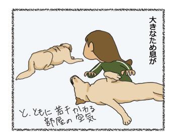 羊の国のラブラドール絵日記シニア!!4コマ漫画「クロエ先輩」2