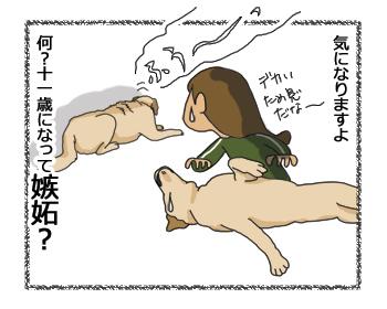 羊の国のラブラドール絵日記シニア!!4コマ漫画「クロエ先輩」4