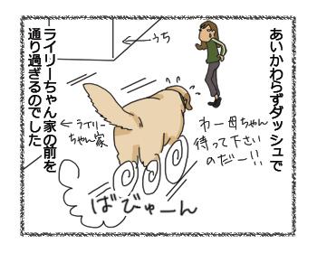 羊の国のラブラドール絵日記シニア!!、その後のライリーちゃん4