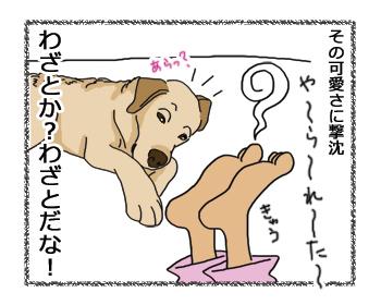 羊の国のラブラドール絵日記シニア!!、さすが!4
