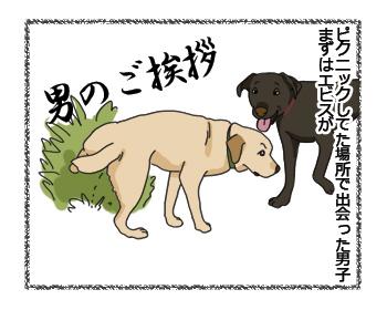 羊の国のラブラドール絵日記シニア!! 上書きの上書き4コマ犬漫画1