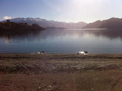 写真ワナカ湖