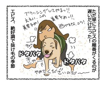羊の国のラブラドール絵日記シニア!!順番かいっ!!4
