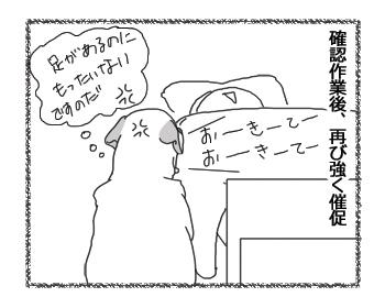 羊の国のラブラドール絵日記シニア!! 詠み手、エビス4コマ漫画3