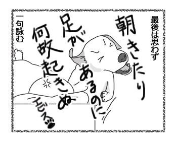 羊の国のラブラドール絵日記シニア!! 詠み手、エビス4コマ漫画4