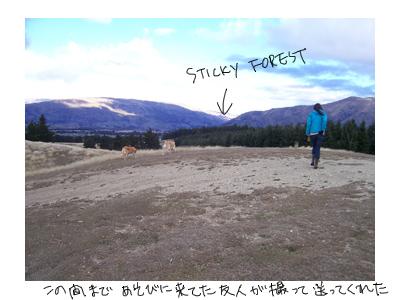 羊の国のラブラドール絵日記シニア!!、ある日森の中1