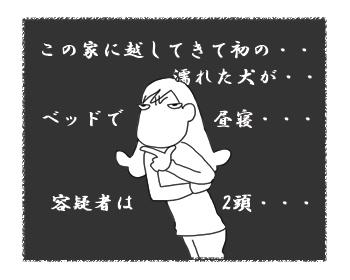 羊の国のラブラドール絵日記シニア!!「シンデレラの靴」漫画3