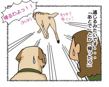 羊の国のラブラドール絵日記シニア!!未来系4
