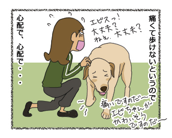 羊の国のラブラドール絵日記シニア!! 同情するなら・・・?4コマ漫画2