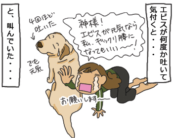 羊の国のラブラドール絵日記シニア!!「ギックリ腰の対価」イラスト1