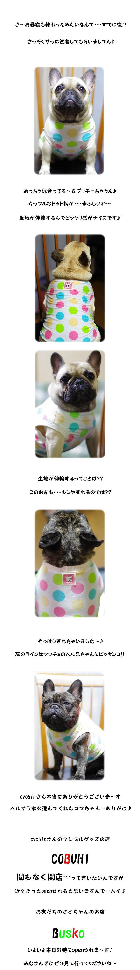 COBUHI2