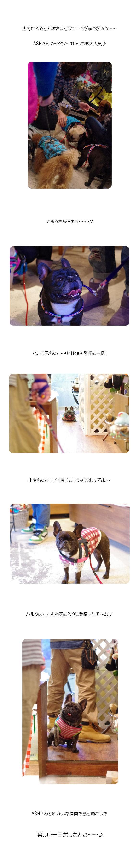 ASH秋祭りC