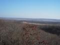 11月の湿原2