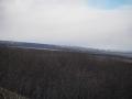 12月の湿原1