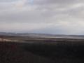 12月の湿原2
