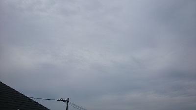 20141105pic.jpg