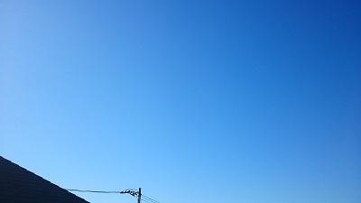 20141110pic.jpg
