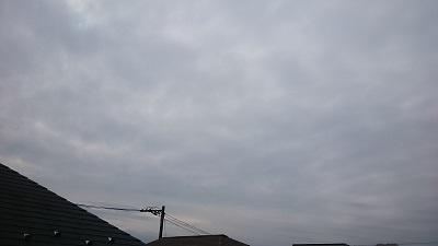 20141120pic.jpg