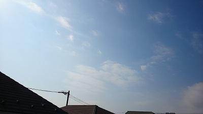 20141124pic.jpg