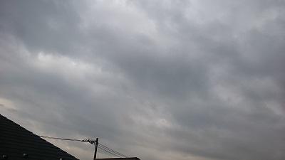 20141128pic.jpg